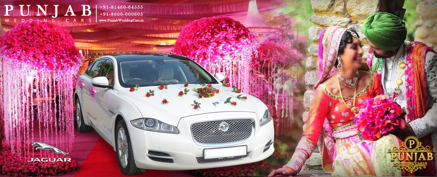 Royal Luxury Wedding car hire rental in Punjab, India